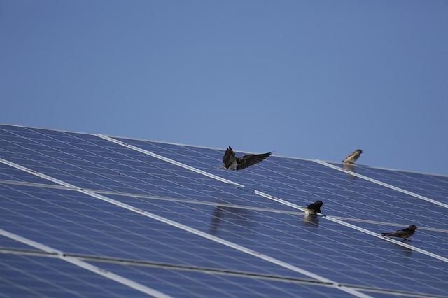 Solární panely střecha
